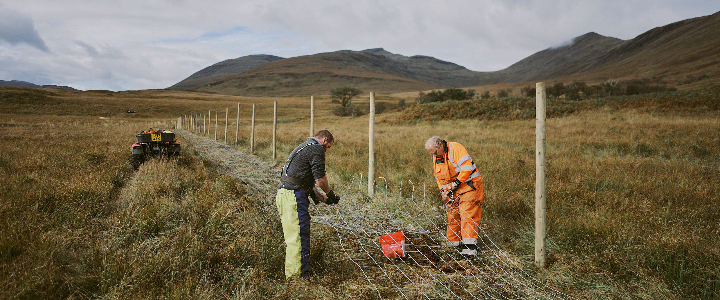 Forestry Solutions Scotland